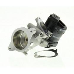 Vanne EGR : Citroen , Fiat , Ford , Lancia , Peugeot , Volvo ( moteur 2.0 HDI 16v )