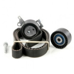 Kit distribution Citroen : C4, C5, C8, Evasion, Jumpy, Fiat Scudo, Peugeot : 206, 307, 406, 407, 607, 806, 807, Expert