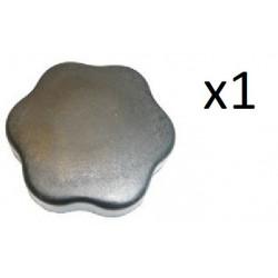 Bouchon de Reservoir d Huile - Citroen AX BX C15 Renault 11 12 18 19 21 Clio 1 Super 5 962139 FIRST Ax