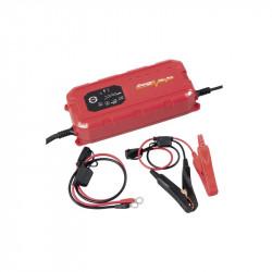 Chargeur batterie intelligent 12V/24V 25A 31314