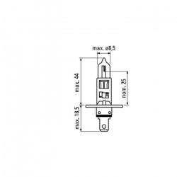 AMPOULE OBN H1 55W 52362