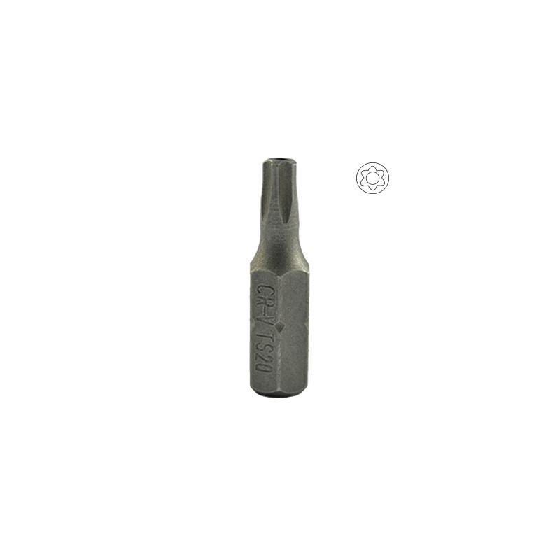 M6 POINTE ALLEN AVEC TORX INV. 20 10299-JBM