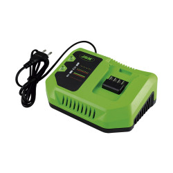 CHARGEUR HAUTE PERFORMANCE 20 V 60017